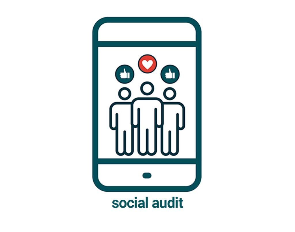 links to social audit page